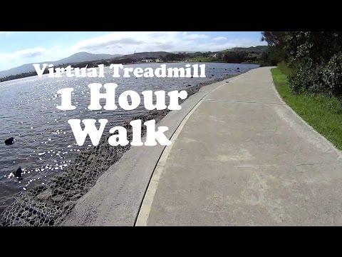 Virtual Treadmill 1 HOUR WALK - Woolamai Point, Berkeley, NSW Australia