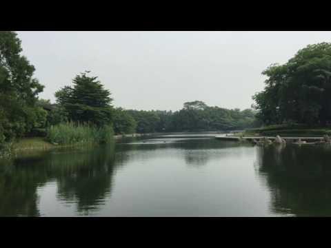 Campus Huawei Shenzhen y alrededores