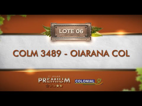 LOTE 06   COLM 3489