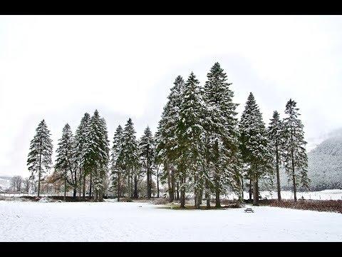 Snowfall around Braemar in the Cairngorms National Park, Scotland, 20th Nov 2017