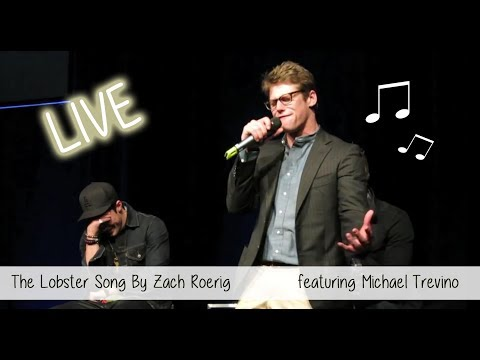 Zach Roerig singing on stage