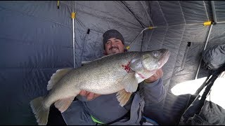 Ice Fishing For GIANT Lake Erie Walleye (2018)