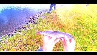 Рыбалка На Протоке Енисея