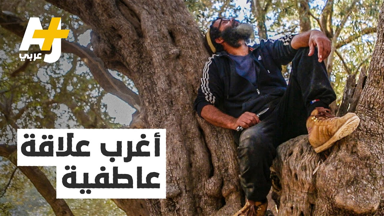أغرب علاقة عاطفية.. بين رجل وشجرة.. ما القصة؟