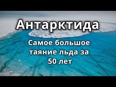 В Антарктиде самое большое таяние льда за 50 лет 2020 год