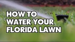 How To Water Your Florida Lawn