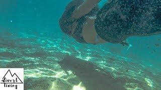 AMAZING Emerald pool in Krabi Thailand🇹🇭🌴
