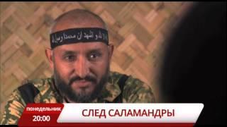"""Анонс  сериала """"След Саламандры"""" телеканал TVRus"""
