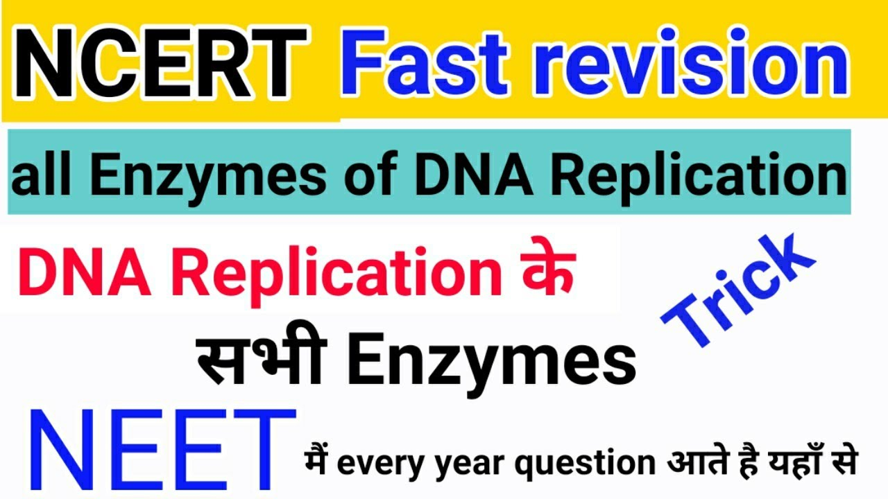 Ncert Fast Revision All Enzymes Of Dna Replication Trick Mnemonic Very Important For Neet Youtube