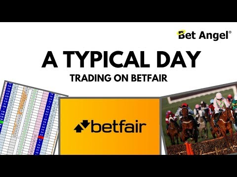 Peter Webb - What does a typical day of Betfair trading look like?