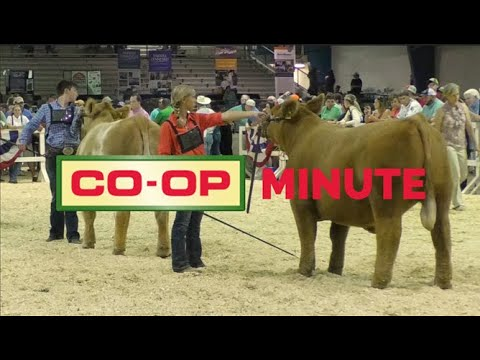 Co-op Minute: Weaver Leather Show Supplies