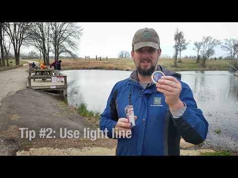 Tips For Catching Rainbow Trout - Tips From A Fisheries Biologist