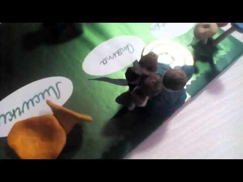 Царство грибов окружающий мир 3мастер класс модель