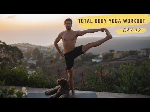 Day 12 Total Body Yoga Challenge Arm Balance Flow | Yoga With Tim