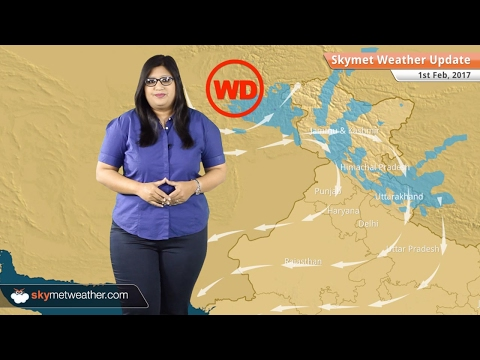 Weather Forecast for Feb 1: Dry weather in India, fog in Delhi, Haryana, Punjab, UP