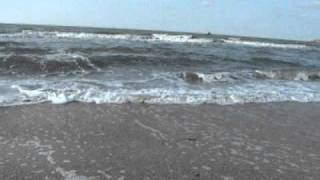 Азовское море сентябрь 2010 г.