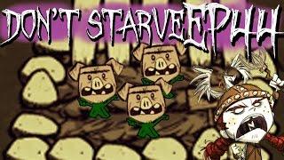 Pig Farming - Don't Starve #44
