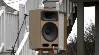 Sentinel V2.0 Diy Speaker Design