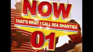 Davy Lowston - Wellington Sea Shanty Society