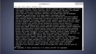 How to Upgrade Debian 7 Wheezy to Debian 8 Jessie - LinuxServe