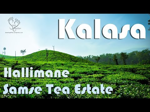 Kalasa | Samse Tea Estate | Hallimane | Karnataka Tourism | Steps Together