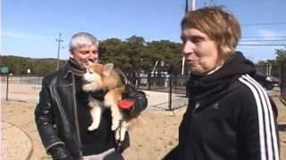 Dog Run At Pilgrim Bark Park (cape Cod)