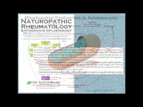 Dr. Alex Vasquez- How GMO Foods Trash Your Mitochondria And Metabolism