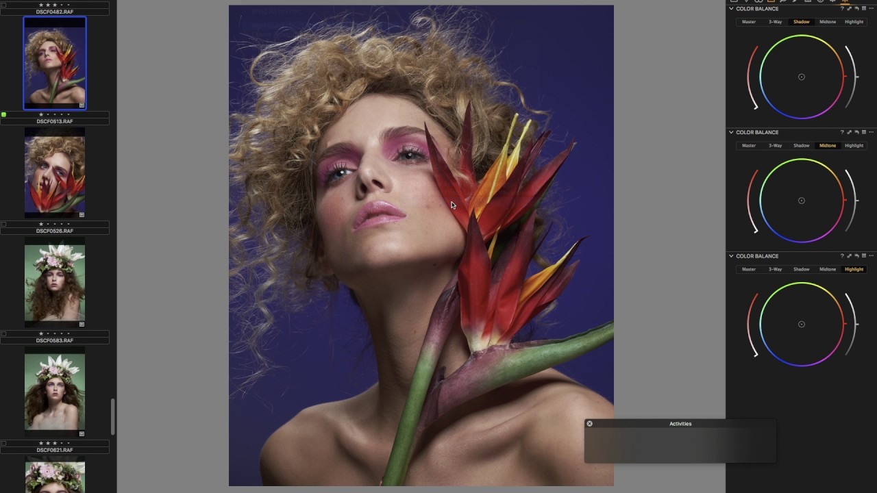Mastering Capture One: A Free Guide  Essential Training