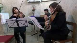 Tale as Old as Time (Piano Trio - Piano, Violin & Viola)