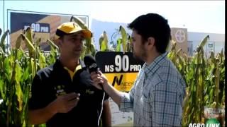 Nidera Sementes no Agrobrasília 2014/ Agrolink