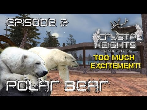 Episode #2 - Crystal Heights Zoo and Gardens: Polar Bear
