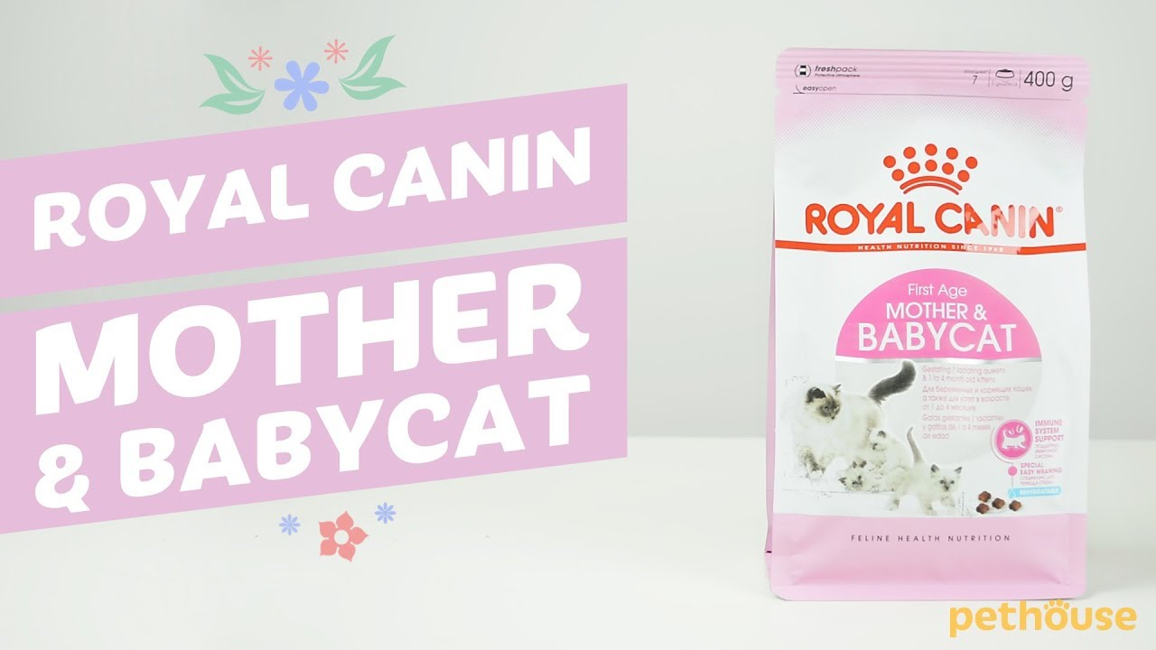 Babycat milk contains carefully selected ultra-digestible proteins, and has a lactose content very close to that of maternal milk. It is particularly suitable for the kitten's digestive system, because it does not contain starch (very young kittens don't secrete enough enzyme to digest starch). The kitten's intestinal flora develops.