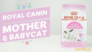 Royal Canin Mother & Babycat | Корм для котят, беременных и лактирующих кошек