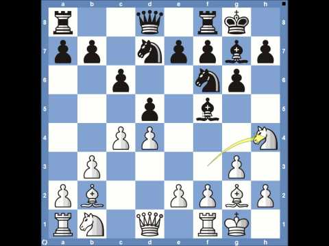 2013 World Chess Championships Carlsen vs Anand - Game 1