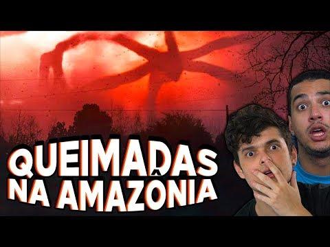QUEIMADAS NA AMAZÔNIA e o DIA ESCURO - Entenda o Caso !!