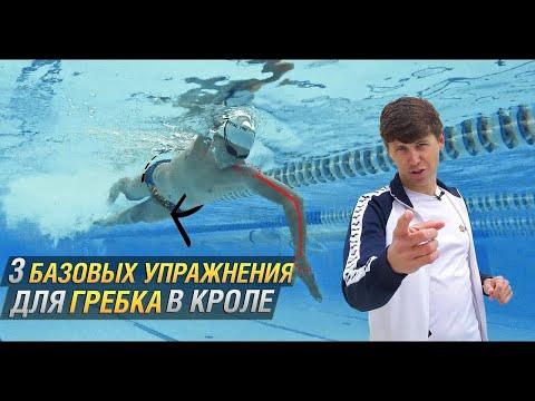 3 БАЗОВЫХ УПРАЖНЕНИЯ ДЛЯ ПЛАВАНИЯ КРОЛЕМ. Упражнения на гребок в кроле. Техника плавания кролем.