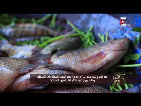 -كل يوم- يرصد أسعار السمك في الأسواق والمصريون في انتظار إنتاج المزارع السمكية