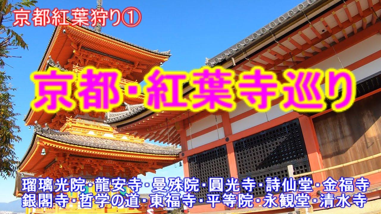 京都寺巡り/紅葉シーズンの終盤