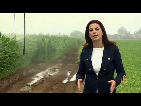 الاقتصاد والناس-ماذا تبقى للمزارع الفلسطيني داخل الخط الأخضر؟  - 21:22-2018 / 5 / 19