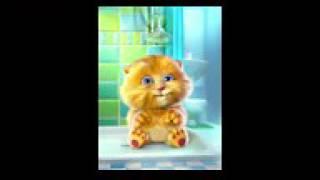 Bintang Kecil Lagu Anak Terpopuler Versi Kucing Lucu Ginger 1