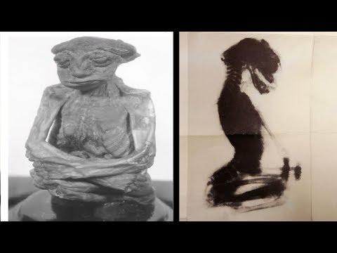 Zagadka Karłowatej Mumii z Wyoming