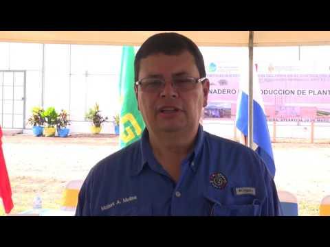 Inauguración vivero plantas de cítricos libre de la enfermedad HLB