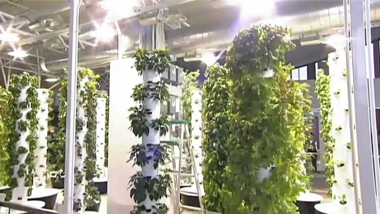 Future Growing Tower Garden Farm At OHare International Airport