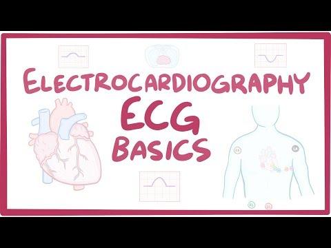 Electrocardiography (ECG/EKG) - basics