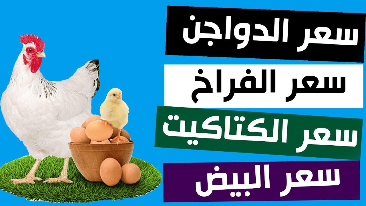 سعر الدواجن الفراخ البيضاء وسعر الكتاكيت في جميع شركات الدواجن في مصر الاربعاء 12-8-2020
