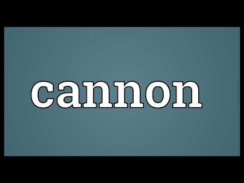 Cannon Meaning