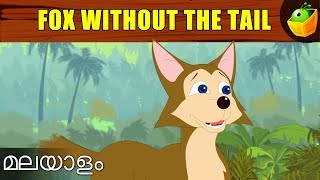 The Fox Without A Tail | Aesop's Fables In Malayalam | Animated Stories