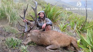 Brad's 1st Stag & Ben's Big 13 - Public Land Red Stags