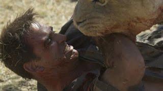 Agresión animal 14 -  Ataque de animales en vivo.