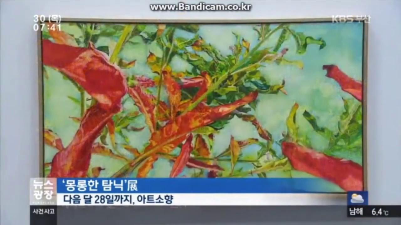Hazy addiction, KBS news